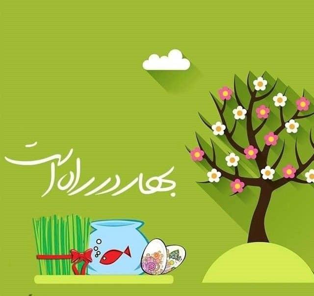 بهار که از راه میرسد جوانه سر میزند، شکوفه می شکفد